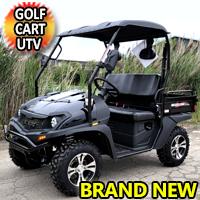 Brand New Gas Golf Cart UTV Hybrid Linhai Big Hammer 200 VX Side by Side UTV - BLACK
