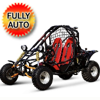 Spider 200 Go Kart 177.3cc Full Auto With Reverse - SPIDER KD-200GKA-2
