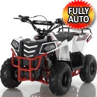 Apollo Series 110cc Mini Commander Automatic Utility ATV