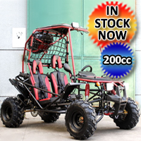 Pathfinder 200 GSX Go Kart Full Size Junior & Adult 2 Seater Dune Buggy