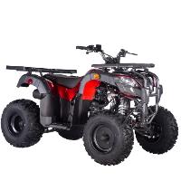 Pentora UT 250cc ATV Utility 4 Stroke Manual Quad