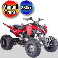 Pentora 250cc Atv Quad 4 Stroke Four Wheeler