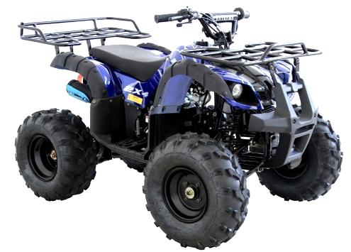 125cc Atv For Sale >> 125cc Atv Kids Junior Four Wheeler Rider 9