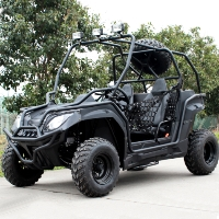 200cc Safari Single Cylinder 4 Stroke Air Cooled Sport Utility Vehicle UTV - CGR-DF200GKV-H