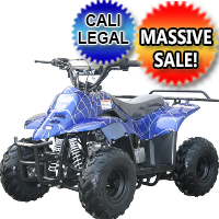 110cc Fully Automatic Mini Size Sport ATV 4 Wheeler