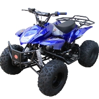 "Coolster 125cc Fully Automatic Mid Size ATV With Big 16""/18"" Tires"