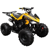 125cc Coolster Atv Intruder Midsize ATV W/Reverse -  ATV-3125CX-2