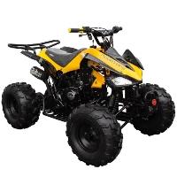125cc Coolster Atv Intruder Midsize ATV W/Reverse -  ATV-3125CX-2