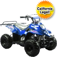 110cc Fully Automatic Mini Size ATV Four Wheeler