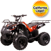 110cc Mini Size Fully Auto ATV Four Wheeler
