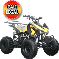 Coolster 125cc Fully Automatic Mid Size ATV Four Wheeler  - ATV-3125CX