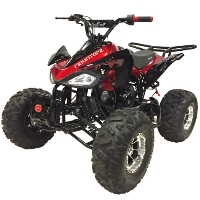 Coolster 125cc Mid Size Fully Automatic ATV Four Wheeler - ATV-3125CX3