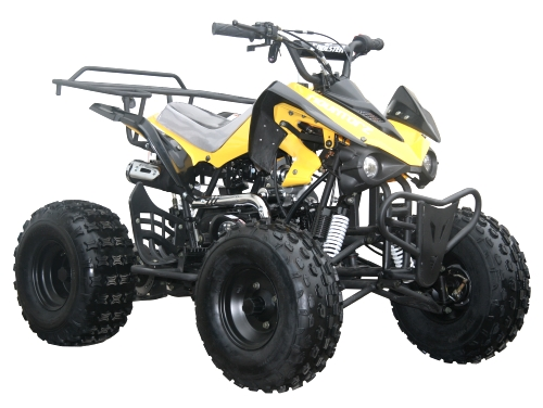 coolster 125cc fully automatic mid size atv four wheeler atv 3125cx