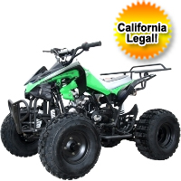 125cc Mid Size Semi Auto ATV Four Wheeler