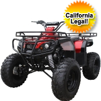 125cc Full Size Semi Auto ATV Four Wheeler
