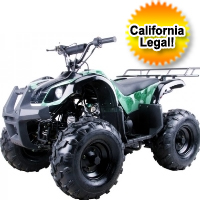 125cc Mid Size Semi Automatic Utility ATV Four Wheeler