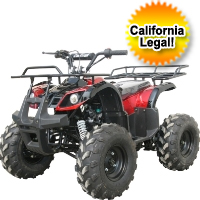 125cc Mid Size Fully Automatic ATV Four Wheeler