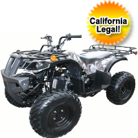150cc Full Size Fully Automatic ATV Four Wheeler