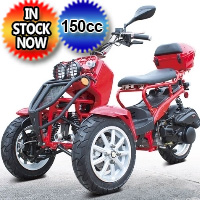 150cc Three-Wheel Ruckus Style Trike Scooter Moped - MODEL DF150TKC