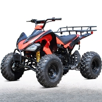 200 Atv 200cc Four Wheeler 169cc ATV 4 Stroke Air Cooled Automatic Sport Plus Atv - DF200AVB