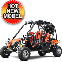170cc Go Kart Adult Full Size 4 Seater Dune Buggy - DF200GHA