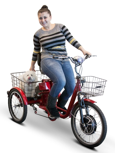 E-Wheels 500 Watt Adult Electric Powered Tricycle Motorized 3 Wheel Trike  Bicycle - EW-29