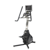 Refurbished Cybex 530s Stepper