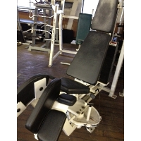 Refurbished Bodymaster Bent Knee Abdominal Machine