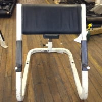 Refurbished Cybex Preacher Bench