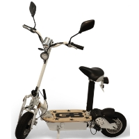 Stand Up/Sit Down 800 Watt Electric Scooter