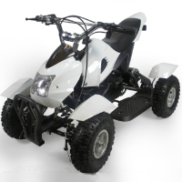 Brand New 500w 36v Gobi Electric ATV Quad