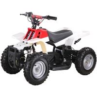 500w 36v Banshee Electric ATV Quad