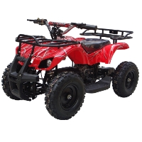 500w 36v Electric ATV Quad
