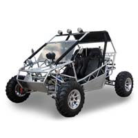 Fully Loaded 250cc Shaft Drive Power Buggy w/ MP3 Speaker and Alloy Wheels!