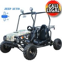 125cc Utility Go Kart - Dune Buggie