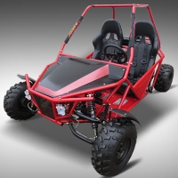 150cc E-Walk Go Kart Dune Buggy