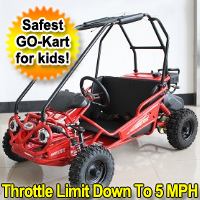 Brand New 5.5HP 4-Stroke Single Cylinder Air Cooled Go Kart