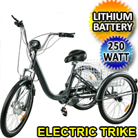 "Adult Electric Tricycle 24"" 250W 36V 10AH Removable Lithium Battery w/Basket"
