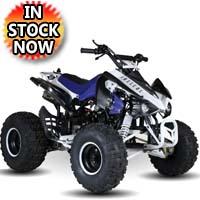 125cc Sport ATV 4 Stroke Fully Auto w/ Reverse 125 Quad - MDL-125A43