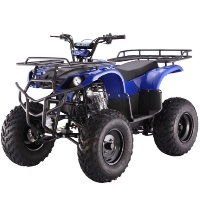 TaoTao Brand New 250D Utility ATV Air Cooled 4 Stroke Full Size Manual Transmission Four Wheeler