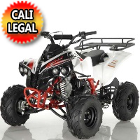 125cc Quad ATV Apollo Series 4 Stroke Single Cylinder Fully Automatic - ATV-121-125