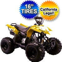 110cc Fully Automatic Mini Size 4 Stroke ATV Four Wheeler