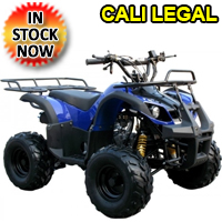 125cc Mid Size Fully Auto ATV Four Wheeler