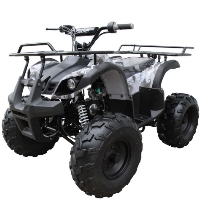 Coolster Brand New 125cc Mid Size Semi Automatic Utility ATV Four Wheeler - ATV-3125XR8-U-S