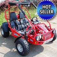 300cc Go Kart CVT Fully Automatic 17.4 HP w/ Reverse