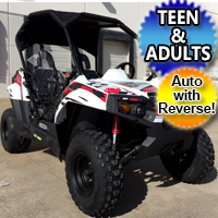 TrailMaster Challenger 150cc UTV Utility Vehicle Extended Version