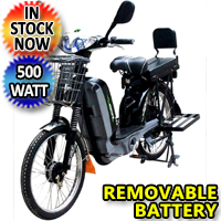 Chopstick 48 Volt 500W 12AH Electric Bicycle - BLW CHOPSTICK