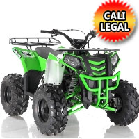125cc Atv Apollo Series Commander 125cc Fully Automatic w/Reverse ATV Four Wheeler - COMMANDER-125CC
