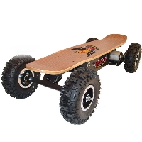 High Quality 800 Watt Dirt Rider Electric Skateboard