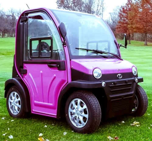 Low Speed Vehicles >> Two Passenger Electric Lsv Street Legal Low Speed Vehicle Golf Cart
